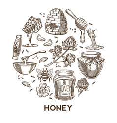 honey products beekeeping and apiary tools vector image