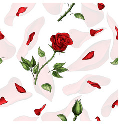 red rose flower and soft petals elements seamless vector image