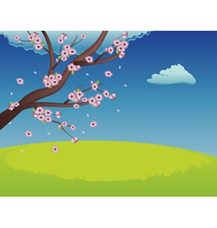 Sakura on Grass Field3 vector image
