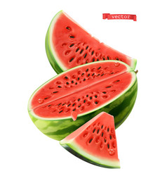 Watermelon 3d realistic icon vector