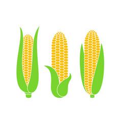 corn logo vector image