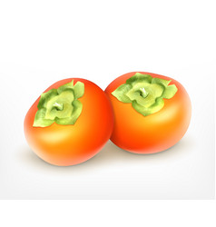 fresh juicy persimmon vector image