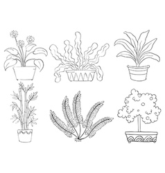 Silhouettes of different shrubs vector image vector image
