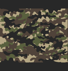 texture military seamless army vector image