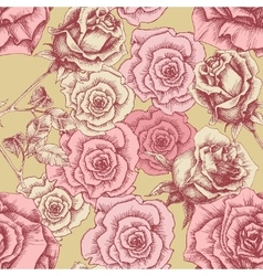 Vintage pink roses pattern Floral print vector