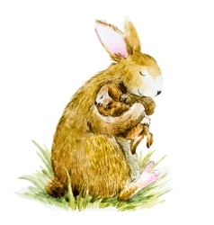 watercolor rabbit with baby vector image