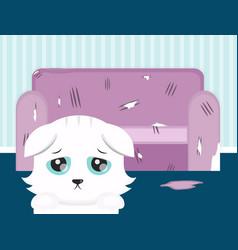 the cat spoiled the sofa sad cat flat vector image