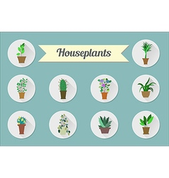 Set of flat icons House plants vector image vector image