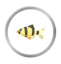 Barbus fish icon cartoon Singe aquarium fish icon vector image