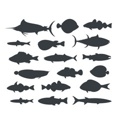 fish silhouette vector image