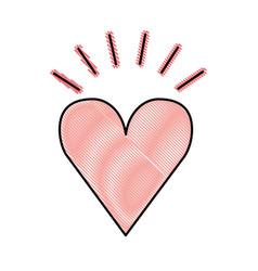 heart love romantic icon vector image