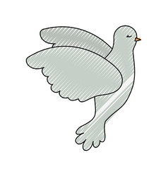 pigeon peace flying in side view on color crayon vector image