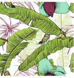 seamless tropical pattern with banana palms vector image vector image