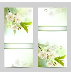 Set of spring banners vector image vector image