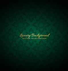 Beautiful green luxury background vector