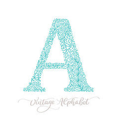 hand drawn a letter calligraphy vintage logo vector image