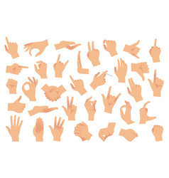 hand gestures various arms human hands ok vector image