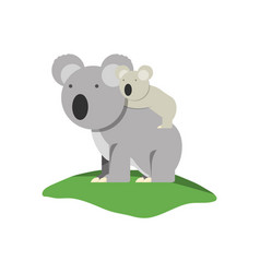 koala icon image vector image