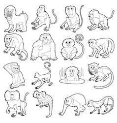 monkeys types icons set outline style vector image