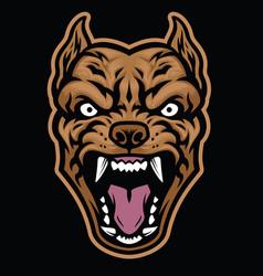 aggressive pitbull dog head vector image