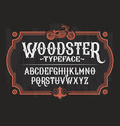 A vintage font the latin vector
