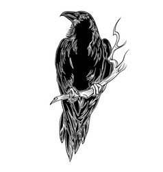 birds crow horror forest wing vector image