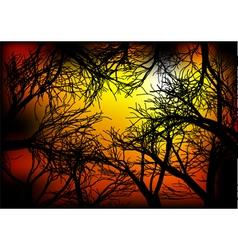 Dark woods vector