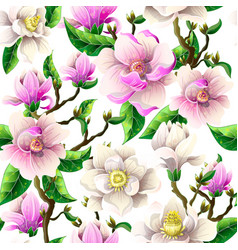delicate seamless pattern with magnolia flowers vector image