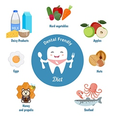 Dental friendly diet vector image