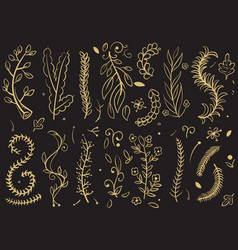 golden trees and florals branches on black vector image