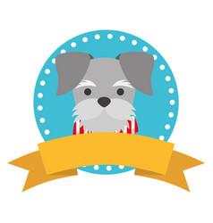 Pet dog ribbon label emblem vector