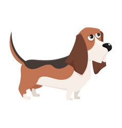 cute purebred basset hound dog character cartoon vector image