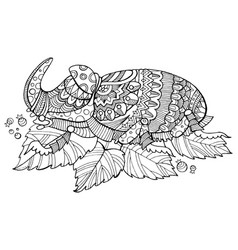 rhinoceros beetle insect coloring book vector image vector image
