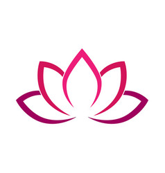 calligraphic lotus blossom in pink-violet colors vector image vector image