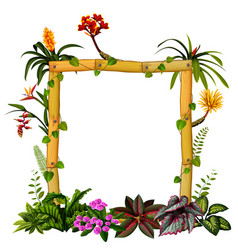 beautiful botanical frame wood with the flower vector image