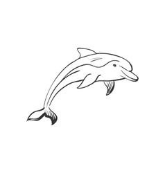 doodle dolphin vector image