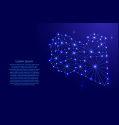 Libya map of polygonal mosaic lines network rays vector