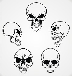 Skulls Collection vector image