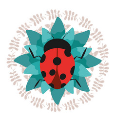 cute ladybug on green flower with wreath vector image