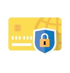 Credit card and Padlock vector image