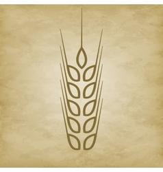 logo wheat icon vector image