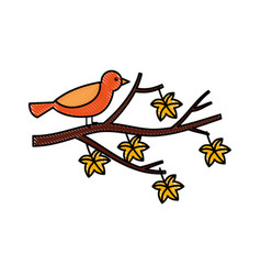 Autumn beautiful bird in branch and leaves vector