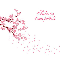 Branches with pink flowers and cherry buds sakura vector