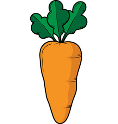 carrot hand drawn design template isolated vector image