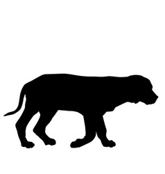 dog puppy silhouette walking vector image