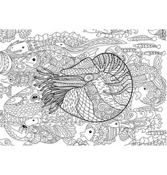 Nautilus with high details vector