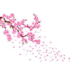 Sakura branches with purple flowers leaves and vector