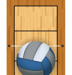 Volleyball and Volleyball Court vector image vector image