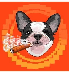 Cute dog head with a cuban cigar vector