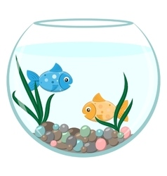 Golden and blue fish in the round aquarium vector image